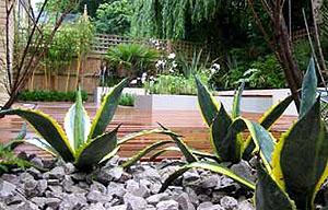 jardines para copiar ideas ejemplos y modelos