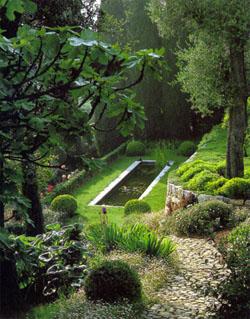 Jardines de sombra jardines sombrios - Arboles para jardines pequenos ...