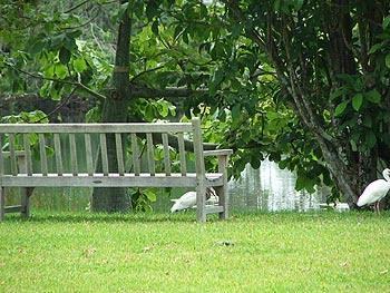 Muebles de jardin bancos en el jardin - Banco para sentarse ...