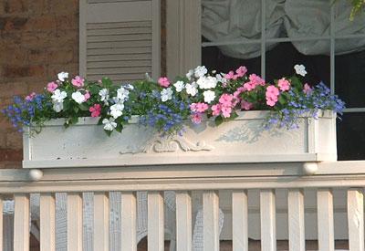 cuando llega la primavera estas jardineras vuelven a organizarse y componerse alegremente